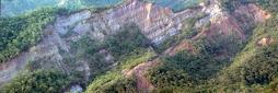 Sección tipo de la F.  Isnotú-Quebrada La Hormiga, estado Trujillo.