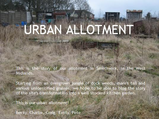 urban allotment