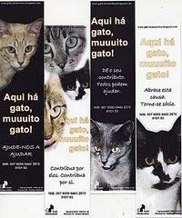O primeiro gatil pedagógico - MARAVILHOSO!http://gatil-simaozinho.blogspot.com/!