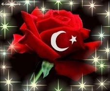 Dünya,da Türkiye, Türkiye,de Gaziantep!