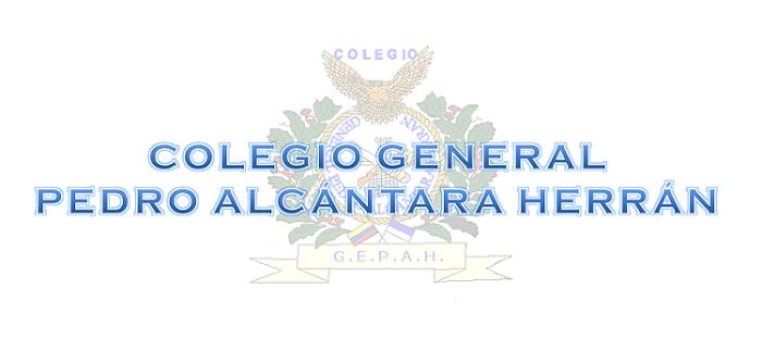 COLEGIO GEPAH
