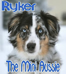 ♥BROTHER RYKER'S BLOG♥