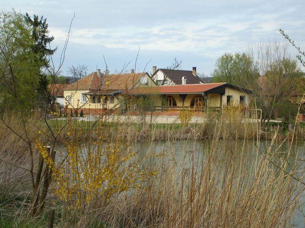 Békavári tó - Tényő