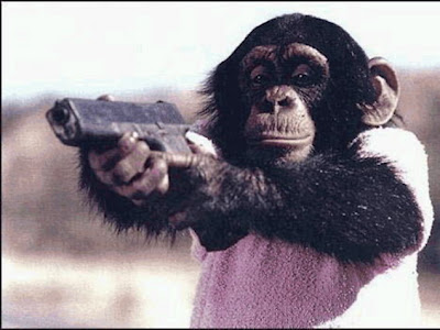 Gorillas with gun wallpapers
