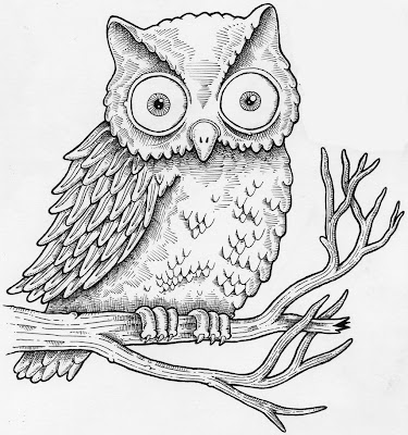 owls drawing pictures