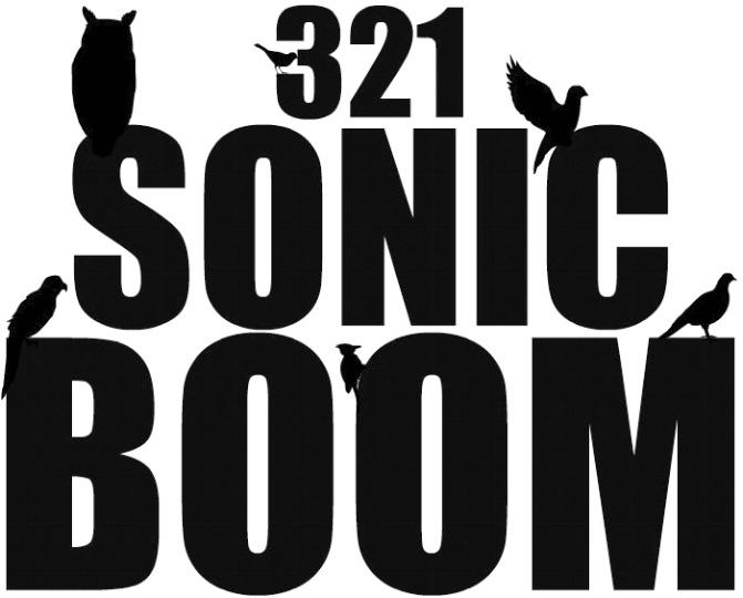 321..SONIC BOOM!