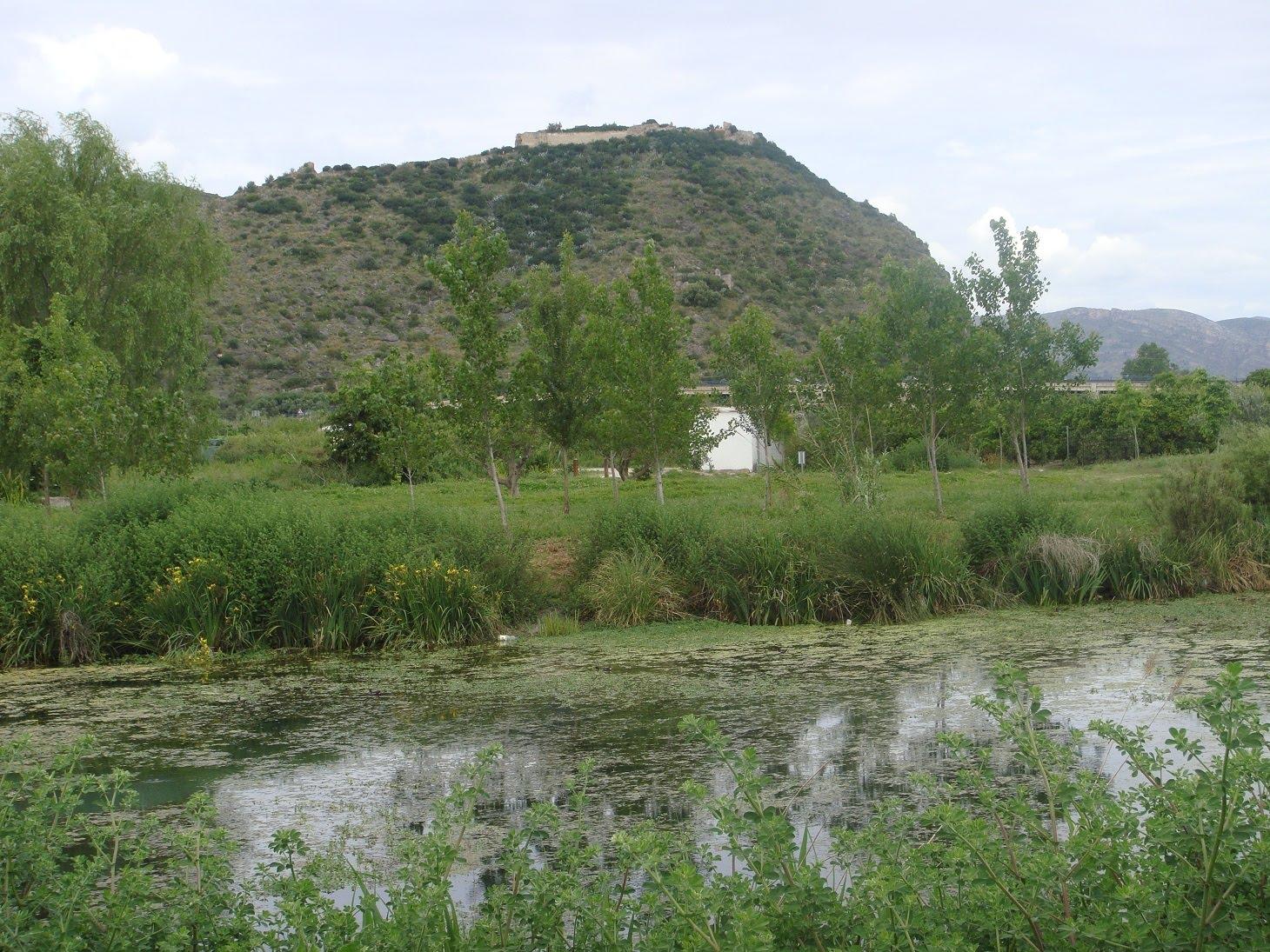 El castell de Bairén des de l'ullal de l'Estany, a prop de l'alqueria del Duc