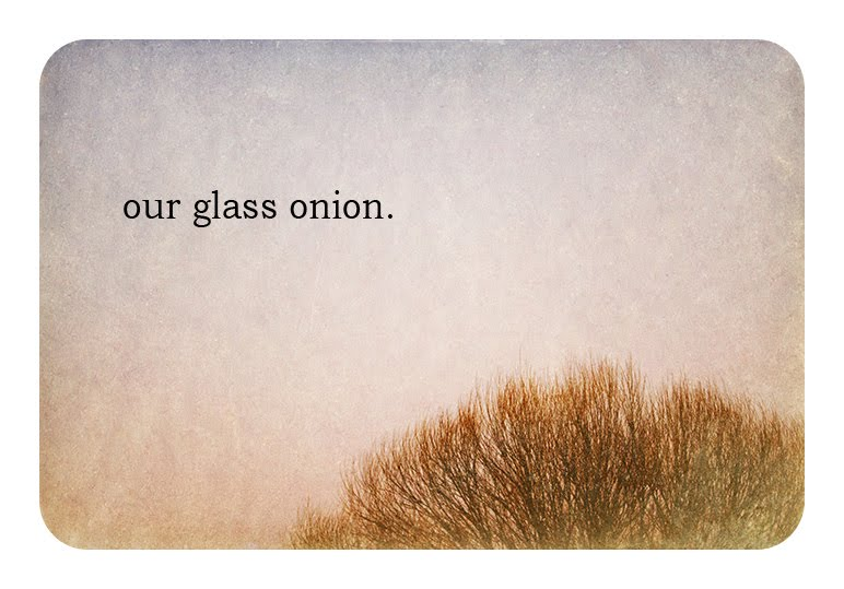 looking through our glass onion.