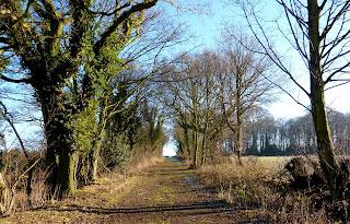 Sir Henry's Lane