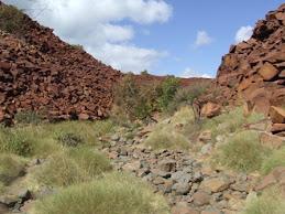 rock carvings site