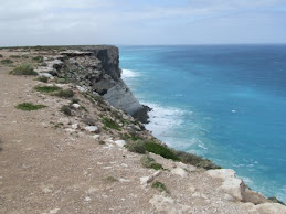 the tall cliffs of the bight