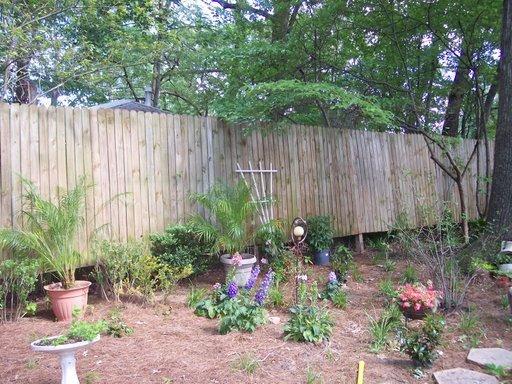 a corner of the backyard