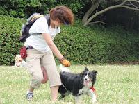 http://border-polly.blogspot.jp/2010/06/blog-post_21.html