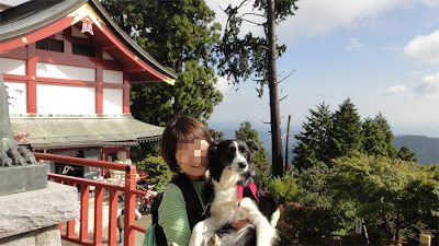 http://border-polly.blogspot.jp/2009/03/blog-post_08.html