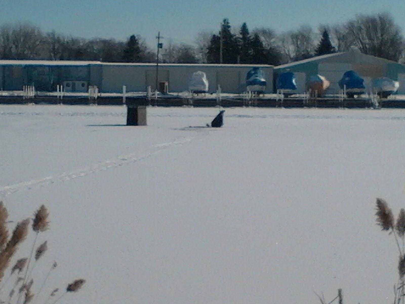 Houghton lake walleye report start of 2010 ice fishing season for Saginaw bay fishing