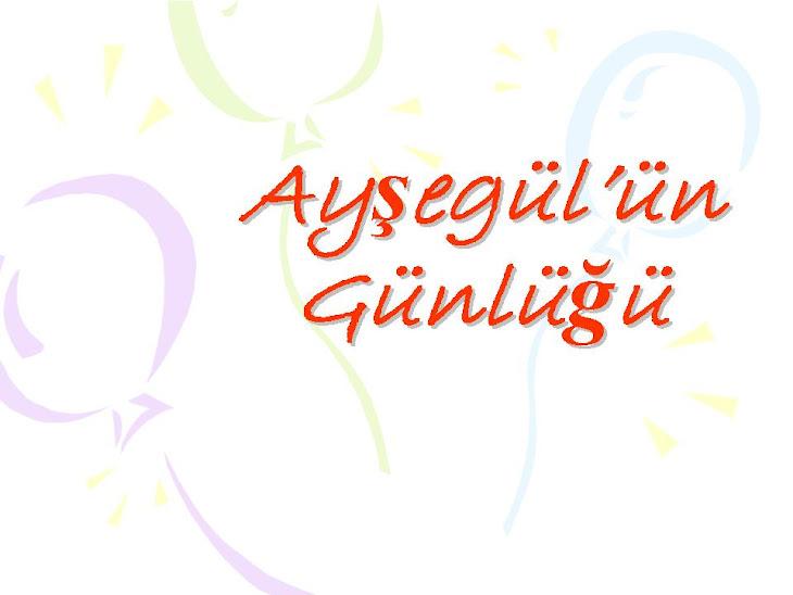 Ayşegül'ün Günlüğü