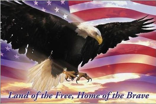 [flag_eagle.jpg]