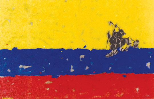 bandera de colombia. Sonya in Colombia: Why did the
