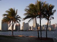 Palmeras, Mar y Rascacielos: Es Miami