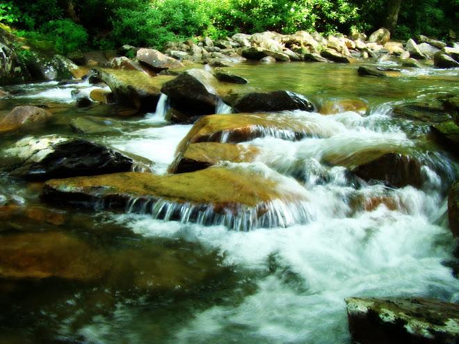 Stream Pic