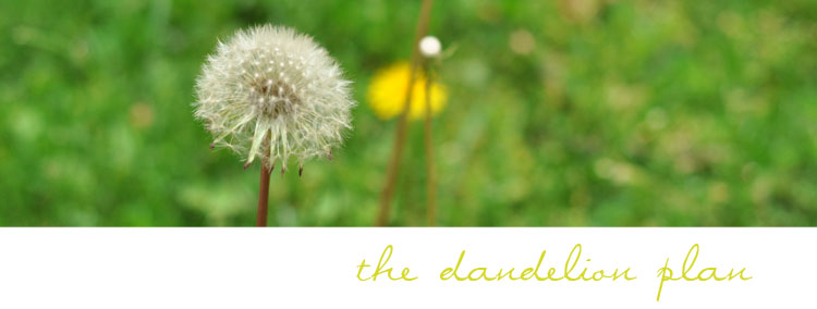 The Dandelion Plan