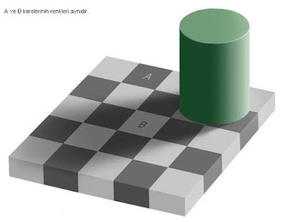 renklerinesitligi1 İnanılmaz Resimler