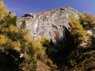 Conglomerate Wall in Bucegi Mountains