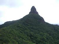 Pico Dama, Biosfera de Río Plátano