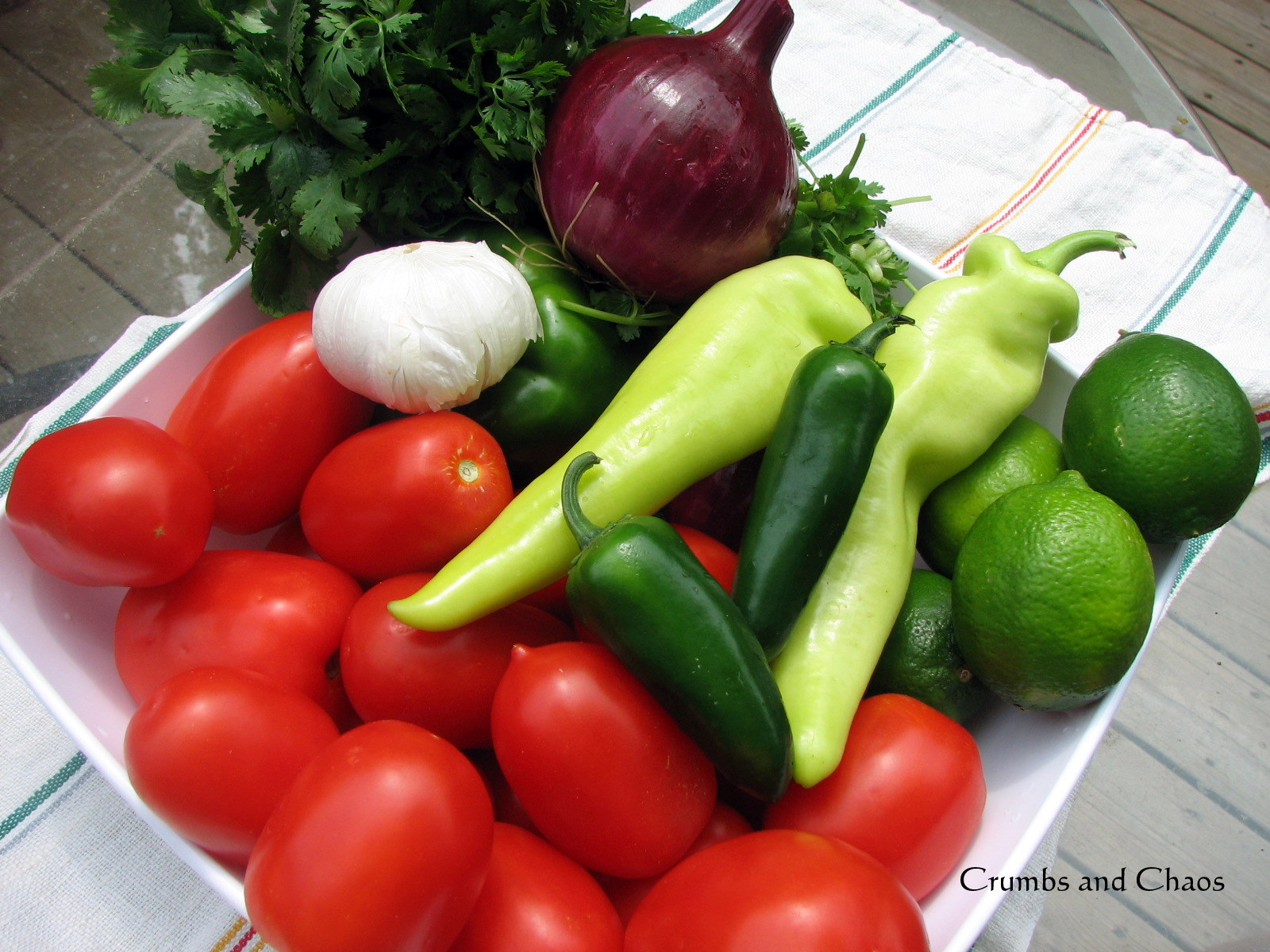 Garden Fresh Salsa Recipe — Dishmaps
