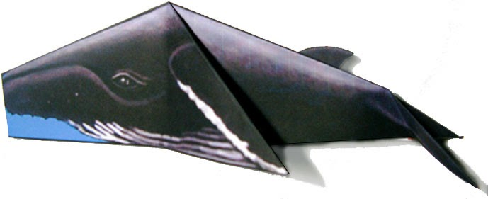 how to make a wedge-tailed eagle paper plane
