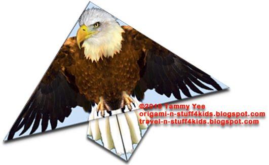 Phenomenal Origami Eagle Diagrams Standard Electrical Wiring Diagram Wiring Digital Resources Operbouhousnl