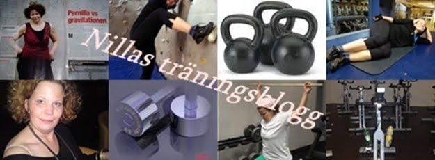 Nillas träningsblogg