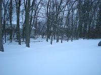more snowy backyard