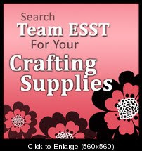 Member of Team ESST
