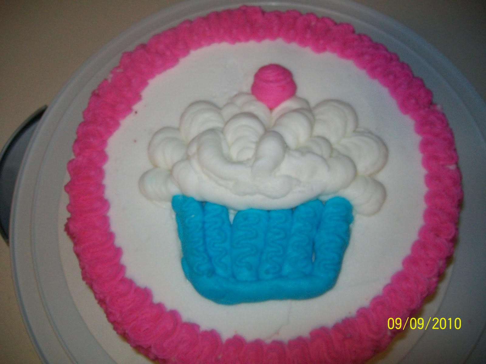 Cake Decorating The Basics : Daisy s Cakes: Basic Cake Decorating- Week 2