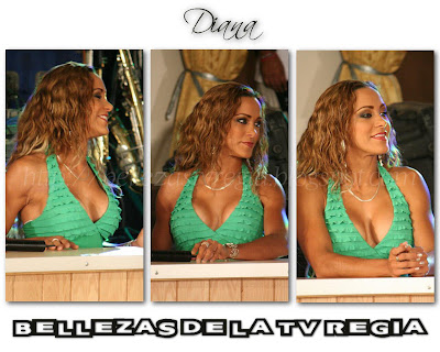 ... TV Regia: Wallpapers Febrero 2010 - Diana La Cazadora (Las Noticias: http://bellezastvregia.blogspot.com/2010/02/wallpapers-febrero-2010-diana-la.html