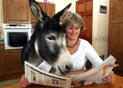 mujer+con+burro+leyendo.jpg