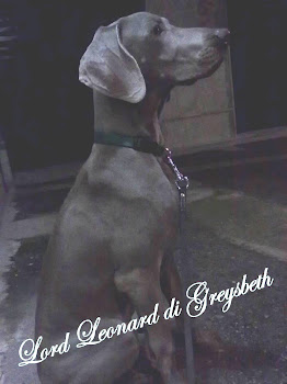 Lord Leonard di Greysbeth