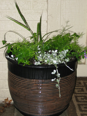Simple Container Planting image