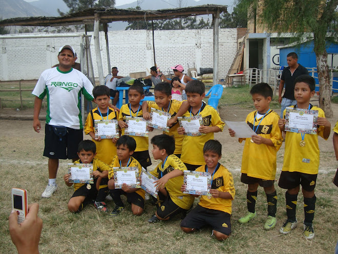 "SUB CAMPEON CAT 2001-2002 CANTOLAO ""CALLAO"""