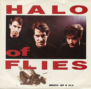 Halo of Flies Death of A Fly 7-inch cover