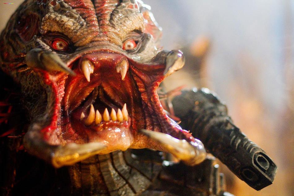 predators-pic-43.jpg