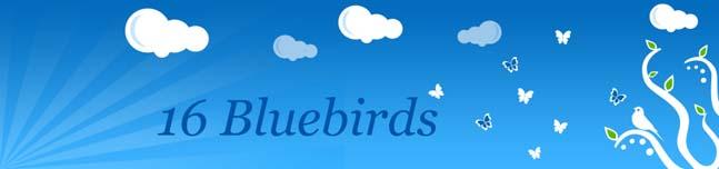 16 Bluebirds