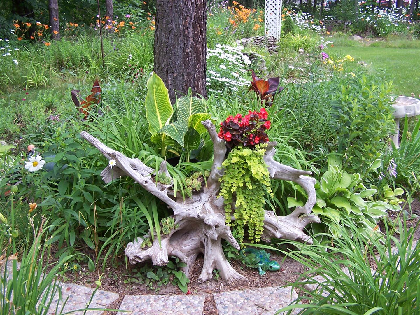 Landscaping With Driftwood : Perennial passion driftwood redo