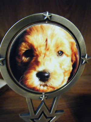 closeup of a circular medallion with a cute red puppy face on it
