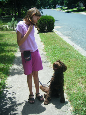 Alfie's in his work gear, sitting and smiling up at Katharine, who is doing some obedience work with him on the sidewalk.