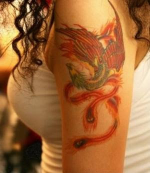 phoenix tattoos design for female