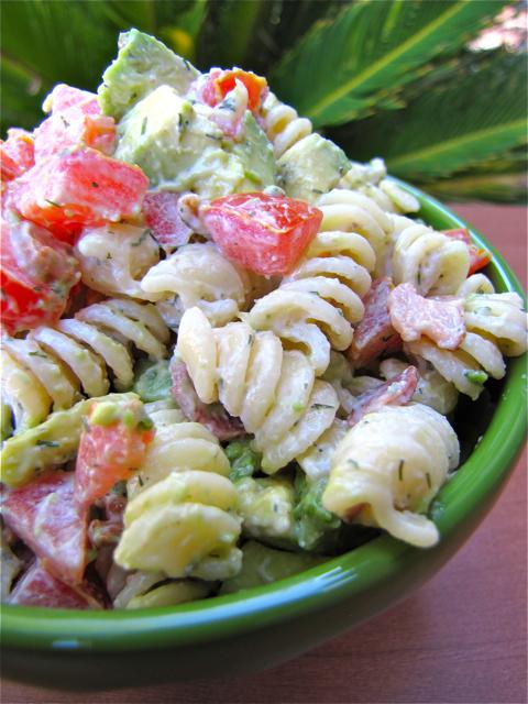 ... pasta blt pasta nettle pasta pasta carbonara seafood pasta pasta