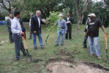 Secretario de Medio Ambiente encabeza operativo siembra árboles