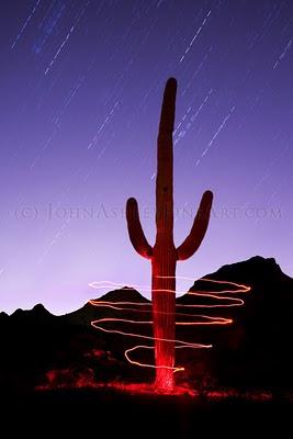 Saguaro Spiral (c) John Ashley